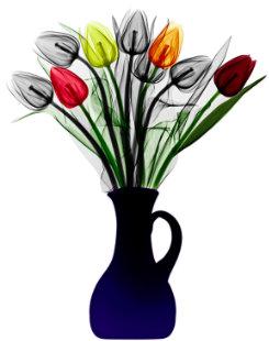 tulips-arie-van-t-riet