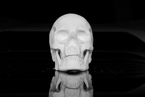cocaine-skull-diddo