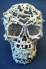 skull-smaller-dimitri-spijk