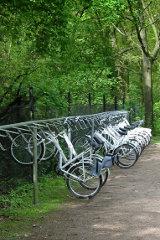 white-bikes-hoge-veluwe-ellywa